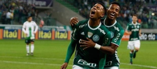 O Palmeiras pode ser campeão nesse domingo, no jogo em casa, diante do Botafogo.
