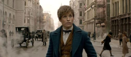 Fantastic Beasts and Where to Find Them': Movie Review - mashable.com