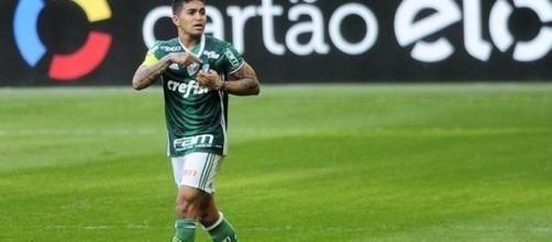 Palmeiras vence Botafogo e está perto do título de campeão brasileiro 2016