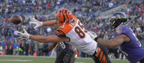 Tyler Eifert Primed For Big Season - TPS - todayspigskin.com