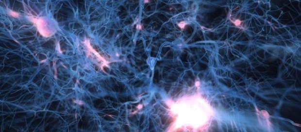Criogenizar solo el cerebro reduce los costes