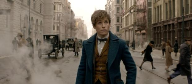 Fantastic Beasts and Where to Find Them Review - comingsoon.net