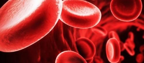 Anemia di Fanconi, di cosa si tratta | Ability Channel - abilitychannel.tv