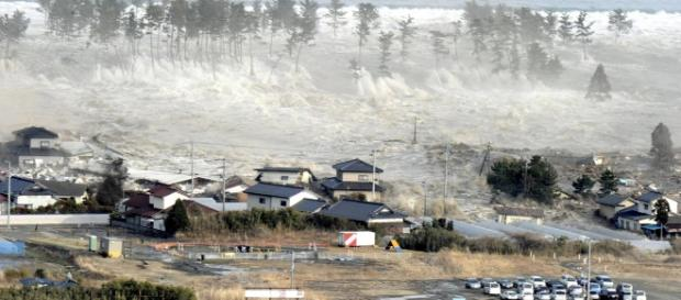 Fukushima - instinto de sobrevivência