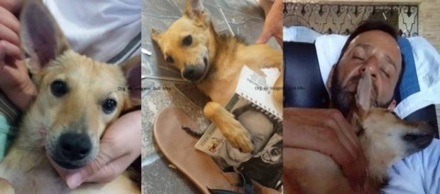 Davi foi resgatado por Wilson Martins (Foto: Reprodução/Facebook Davi Papai)