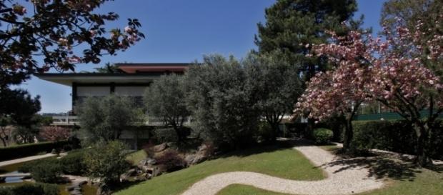Il Giardino giapponese a Roma: quando e come visitarlo a dicembre