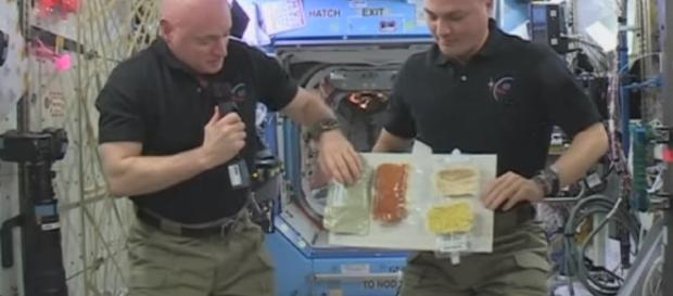 ISS Astronauts To Celebrate Thanksgiving In Space: Here's How ... - techtimes.com