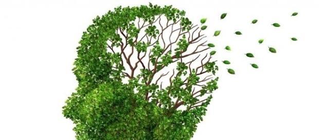 Poco a poco estamos más cerca de deterner una enfermedad que nos preocupa a todos; el Alzhéimer