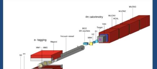 Observation of electron-positron pairs from a new particle with ... - slideplayer.com