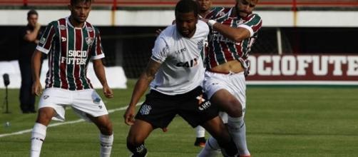 Fluminense e Figueirense se enfrentam no Orlando Scarpelli neste domingo (Foto: Yahoo Esportes)