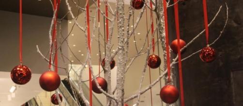 Aprenda a reutilizar galhos secos na decoração de Natal!