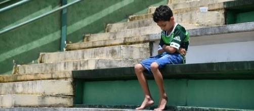 Pequeno torcedor da Chapecoense se isola em arquibancada durante tributo às vítimas da tragédia