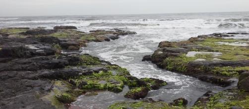 Praia da Cal e sua natureza exuberante.