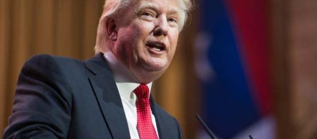 Donald Trump shutterstock thefederalist.com