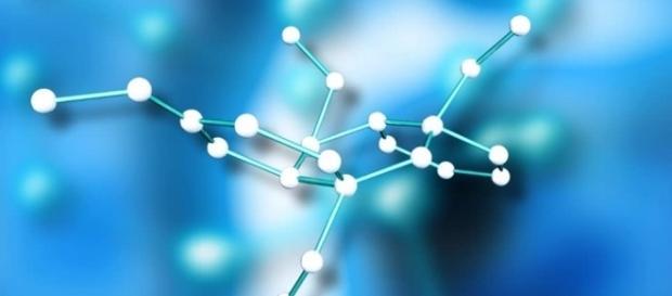 La bioquímica de la vida es un campo de investigación puntero hoy en día