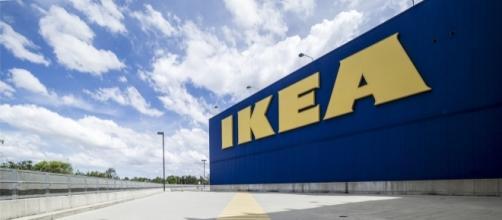 IKEA cerca personale: ricercate diverse figure in Italia
