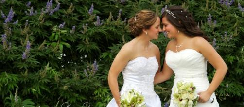 NYC and New Jersey Gay and Lesbian Wedding Photography///Deanna ... - blogspot.com