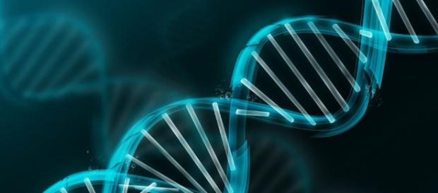 Investigan el genoma humano con participación platense | Diario Hoy - diariohoy.net