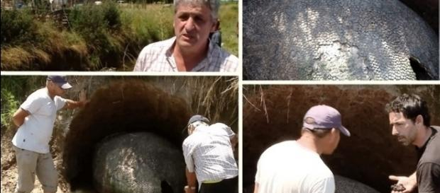 O objeto estranho encontrado no quintal de uma casa no Uruguai, mais parecia ser um 'ovo de E.T.'