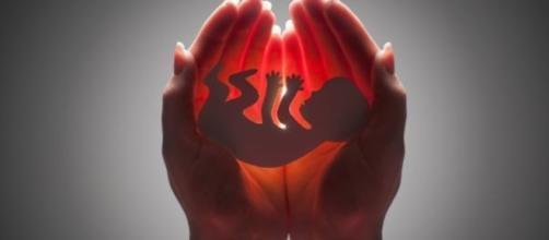 Para o STF, não é crime abortar até o 3º mês de gravidez