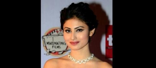 "Shivanya's killer to be revealed on ""Naagin 2""? (Image source: Wikipedia)"