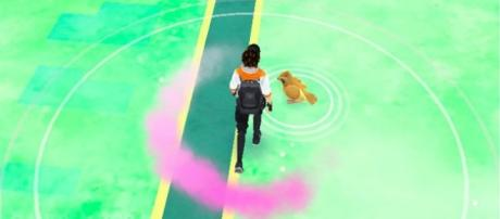 'Pokemon Go:' new Pokemon to replace Rattata, Pidgey & Zauba revealed. Wikipedia Photos