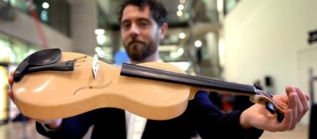 Luca Alessandrini inventa violino con seta di ragno: premiato a Londra