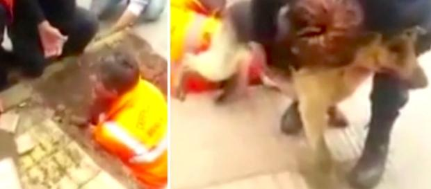 Men Find A Dog Trapped In A Tiny Sewer For 4 Days, So They Break ... - littlethings.com