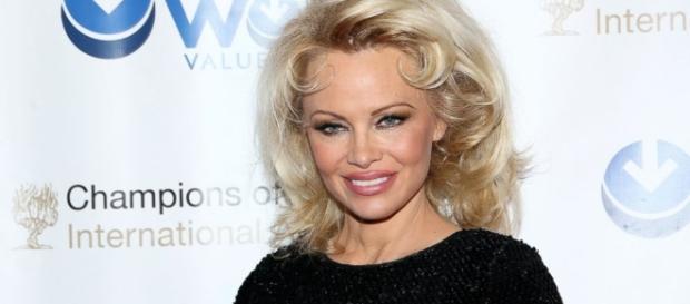 Pamela Anderson Videos at ABC News Video Archive at abcnews.com - go.com