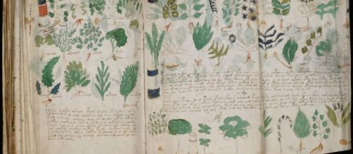 Le manuscrit le plus mystérieux du monde sera publié en 2017 ... - dailygeekshow.com