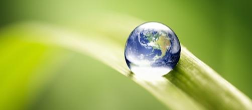 A gestão conflituosa junto com uma mal adminitração gera conflitos ambientais