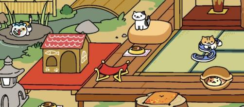 Cat game Neko Atsume set to become live-action film - gamezebo.com