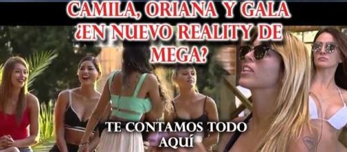 Nuevas concursantes de reality chileno