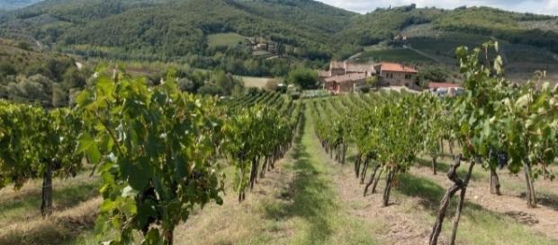 Eine Azienda Agricola im Piemont Quelle: Pixabay