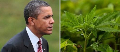 Barack Obama favorevole alla legalizzazione federale della marijuana