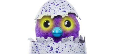 Where can you buy one of the Hatchimals? Photo: Blasting News Library - irishmirror.ie