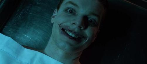 Gotham: ¿Veremos a Jerome Valeska como el Joker en la temporada 3 ... - melty.es