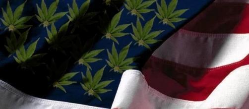 In Colorado la cannabis è legale dal primo di gennaio del 2014