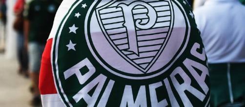 Torcedor do Palmeiras ostenta bandeira
