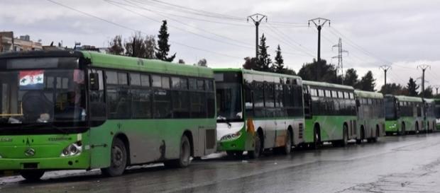 Bus utilizzati per l'evacuazione città di Aleppo (via Dawn)