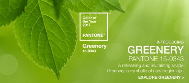 PANTONE 15-0343 Greenery è il colore dell'anno 2017