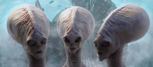 Secondo un ex ministro canadese, coesistiamo con numerose razze aliene.