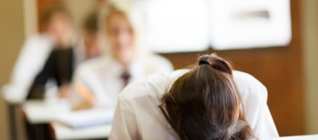 Orientation scolaire des décrocheurs : quel avenir ?