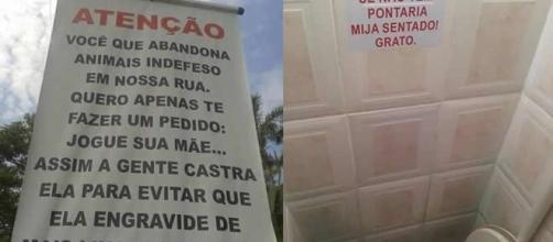 Placas que foram feitas por brasileiros