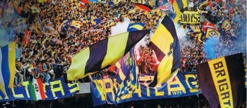 I tifosi dell'Hellas Verona, seconda nella speciale classifica di presenze medie in serie B