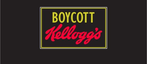 Kellogg's has accused over 45.000.000 of anti-American ideals and is paying a dear price for having done so Image from ixquick-proxy.com