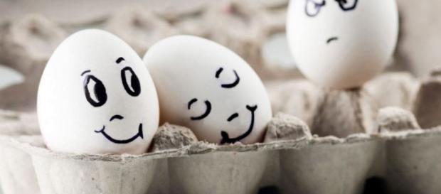 Emoções. São muitas: tristeza, alegria, raiva, medo, etc...