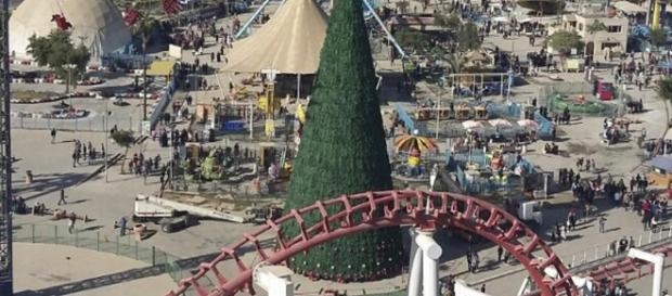 For love and peace: Iraqi businessman erects tallest Christmas ... - hindustantimes.com