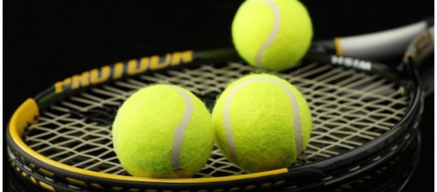 Petra Kvitova vai falhar início de temporada