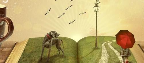 10 motivi per leggere un libro   PourFemme - pourfemme.it
